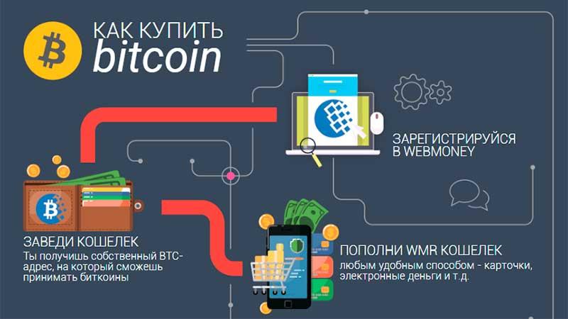 Bitcoin кошелек Webmoney (авторство этого фрагмента инфографики принадлежит webmoney.com)